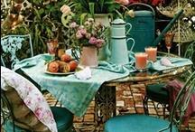 Garden / by Martina Fuchs