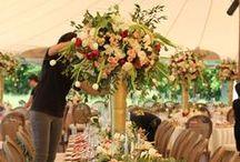 Vineyards at Chappel Lodge Weddings