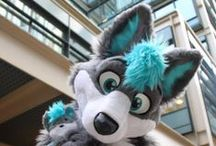 ⭐Some Furry Trash⭐ / Furry stuffs~