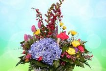 Mothers Day 2014 / Enjoy our Mother's Day 2014 offerings!