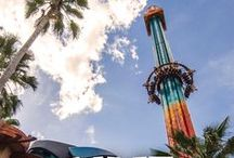 Thrill Rides & Adventures / Soar, drop, tilt, spin and zip on Florida's top rides with these thrilling day trip ideas for kids.