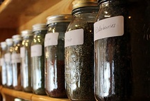 Home Apothecary.  / herbs and salves and tinctures and teas and healing remedies from the earth!