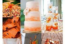 Color Palettes / by Wedding411 On Demand
