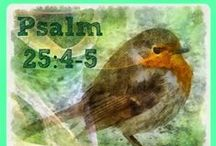 ♥ PSALMS ♥ / These 1-minute devotions from Bible Love Notes are about the truths and principles contained in various Psalms.