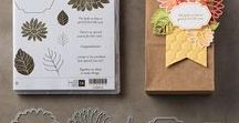 Stampin' Up! Special Reason / Stampin' Up! Special Reason stamp set and bundle from the Occasions Catalog. You can order this in my online store at: http://www.stampinup.com/ECWeb/default.aspx?dbwsdemoid=2170559
