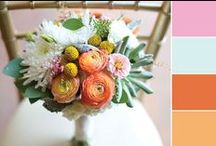 Wedding Color Inspiration! | George Street Photo & Video / by George Street Photo & Video