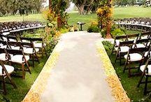 Wedding stuff  / by Amanda Fisher