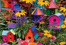 Bird Houses, Bird Baths & Bird Feeders ~ Casas del pájaro, baños de aves y comederos para aves / by Irene Niehorster