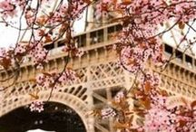 // THE PARISIAN DREAM / Paris is a magical place for me. And for millions of others. I wanna go here with my boyfriend soon!