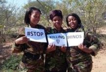 """The Black Mambas - Champions of the Earth / The Black Mamba Anti-Poaching Unit, a South African APU consisting mostly of women, has been named as one of the winners of the top United Nations environmental prize. By bestowing its Champions of the Earth award to the Black Mambas, in the Inspiration and Action category, the UN Environment Programme (UNEP) is recognizing the """"rapid and impressive impact"""" the unit has made in combating poaching and the courage required to accomplish this task"""
