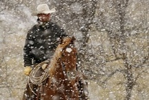 Books  - The Cowboy's Christmas Plan / The first book in the Grass Valley Series set on the fictional Triple T  Ranch with the three handsome Thompson brothers.