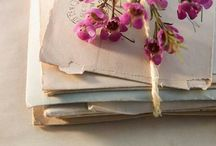 Libros y pergaminos