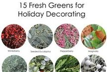 Holiday Decorating / Holiday decorating inspirations for many occasions, but mainly Christmas...