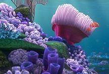 Fantastic Sea Life / by Renée