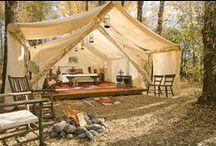 Camping / by Renée
