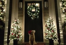 Holiday: Christmas / Holiday decorations, tips and products / by Rebecca Adkinson