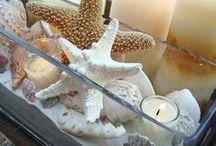 Beach Decor Seashells