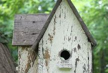 Bird houses / by Nancy Noel