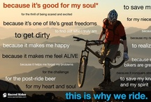 Bike Rides / Great cities, trails, and other places to ride. / by Pedal Pirates Cycle Crew