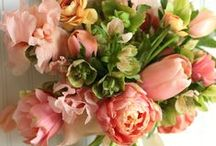 wedding details ♥ floral lovelies / flowers that wow for your wedding day! / by Sunshine and Ravioli