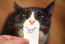 When I need a smile