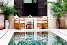 OUTDOOR SANCTUARY / by Lotus Flower