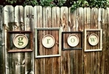 Garden / by Susie Moroney