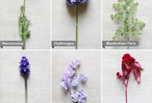 Flower Types / by Style by Design