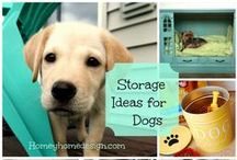 Mutt Life / Recipes, natural remedies, all for dogs / by Mimi D