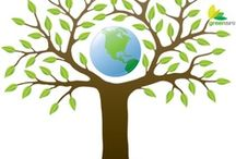 Green Design / IDES 302/Prof. New / by Cheryl Ramey
