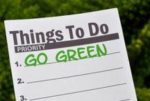Green ideas / by Nancy Hill