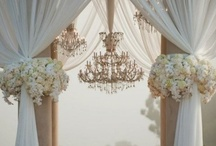 Wedding / by Leanna Tanner
