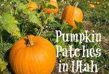Utah Activities & Events