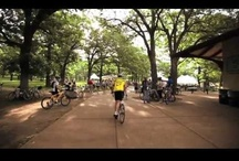 Tour de Cure  / by Diabetes MN