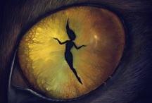 Legend, Myth, and Enchantment / . / by Karen Vigil