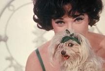 Vintage Puppy Love / by Cleo Walker