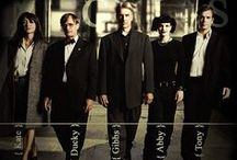 ♡ncis♡ / the Best show on TV / by Beth Heckman