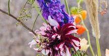 Herfstbloemen / Najaar, herfstbloemen, bessen en andere natuurlijke najaarsmaterialen.