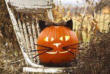 Halloween / by Lynne M
