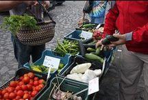 farmářské trhy - farmers market