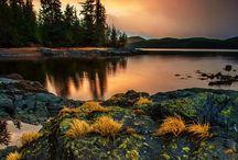 Alaska / by Lynne M