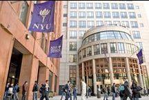 New York University Stern School of Business / News from NYU Stern
