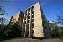 Kellogg School of Management at Northwestern University / News and information from Northwestern Kellogg