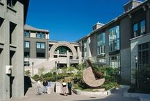 Haas School of Business at the University of California Berkeley / News and information from UC Berkeley Haas.