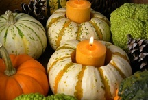 Halloween Decorating Ideas / Fun ideas for decorating your home and backyard for Halloween.