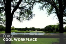 For A Cool Workplace / by Allstate Insurance