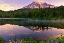Beautiful Places  / by Crissy Riley