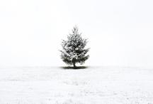 Winter / by Erin Bennett