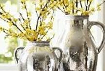 Spring / by Erin Bennett
