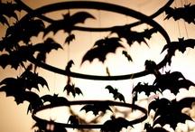 My Favorite Time of the Year....aka Halloween!  / by Kirsten davis